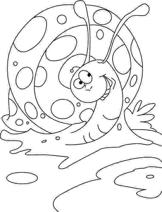 snail pictures to color snail coloring page spring earth day coloring pages to pictures snail color