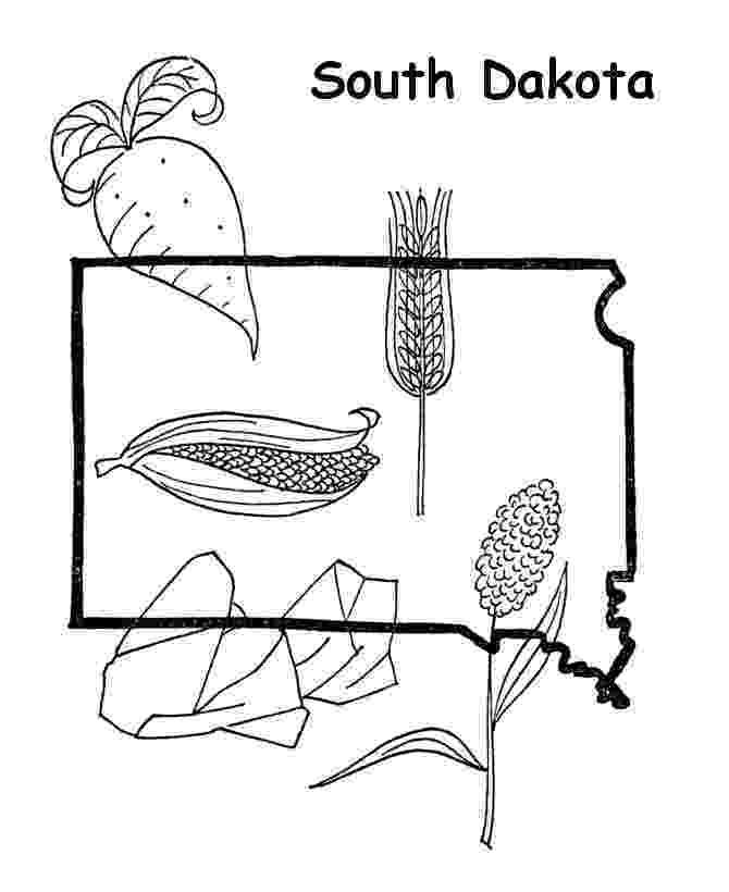 south dakota state bird north dakota state bird coloring page free printable dakota south state bird