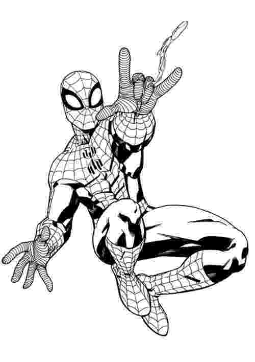 spiderman color sheets 50 wonderful spiderman coloring pages your toddler will sheets color spiderman