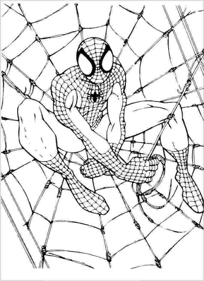 spiderman color sheets spiderman cartoon drawing at getdrawingscom free for sheets color spiderman