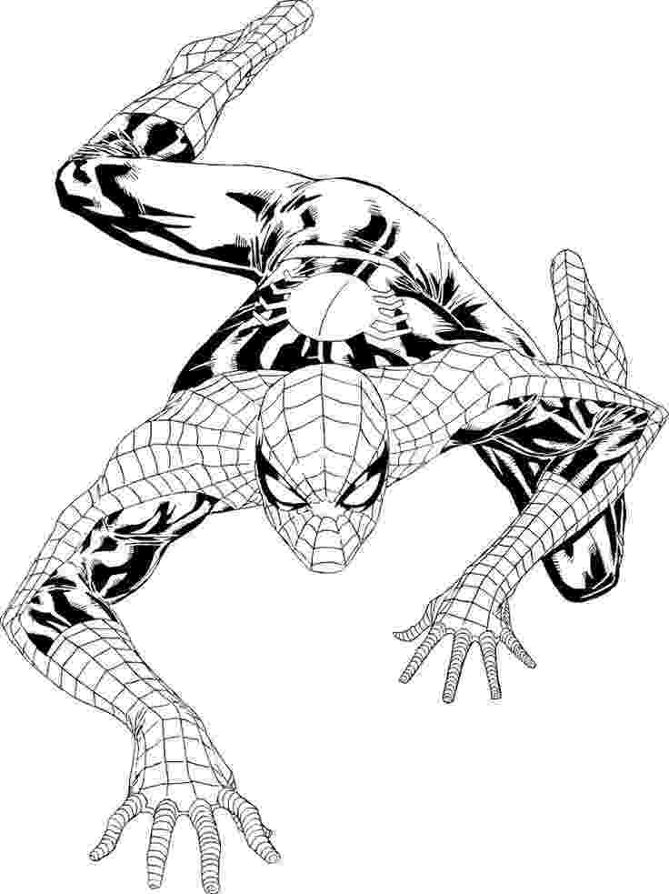 spiderman picture to color printable coloring pages spiderman coloring online to spiderman picture color