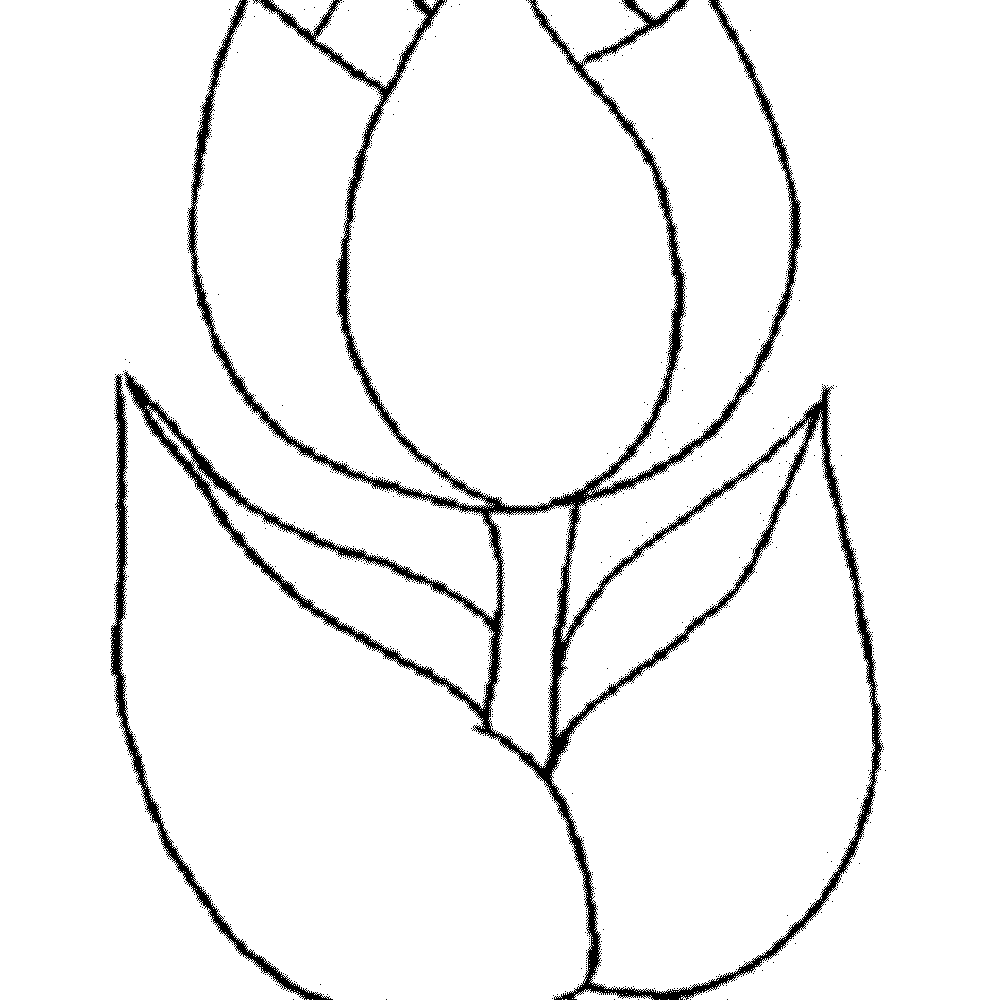 spring flower coloring pages coloring pages spring coloring pages 2011 coloring pages spring flower