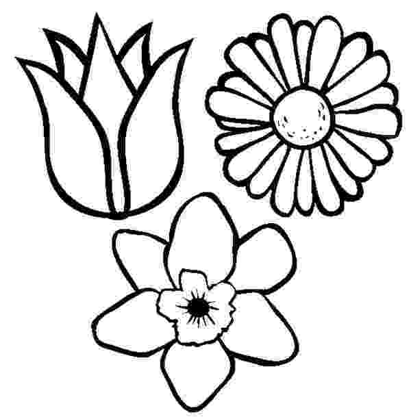 spring flower coloring pages free printable spring color page for kids daffodils flower pages coloring spring
