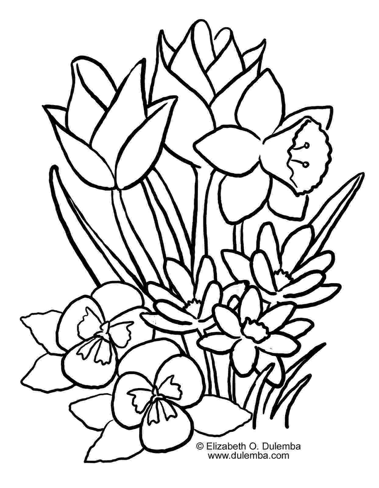 spring flowers coloring pages to print spring flowers coloring page free printable coloring pages coloring flowers spring pages print to