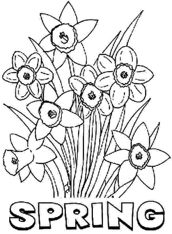 spring flowers printable coloring pages spring flower coloring pages getcoloringpagescom coloring printable flowers pages spring