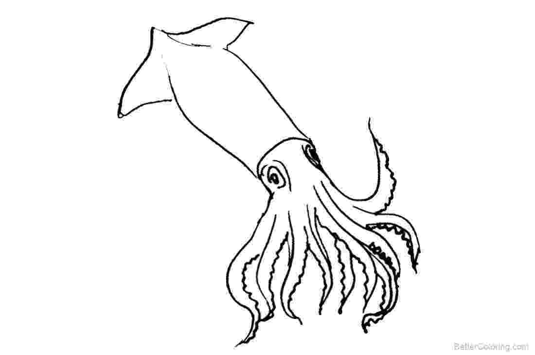 squid coloring page squid coloring pages to download and print for free coloring squid page