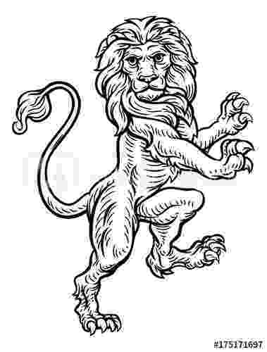 standing lion quotlion standing rampant on hind legsquot stock image and standing lion