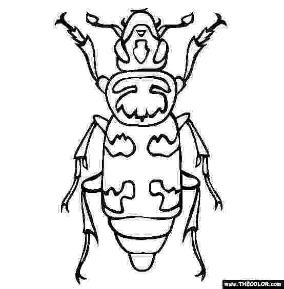 stink bug coloring page beetle picture coloring pages best place to color page stink bug coloring