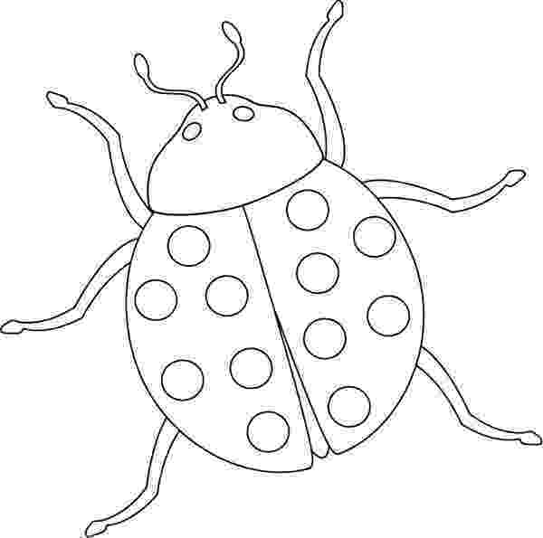 stink bug coloring page brown marmorated stink bug coloring page free printable page bug coloring stink