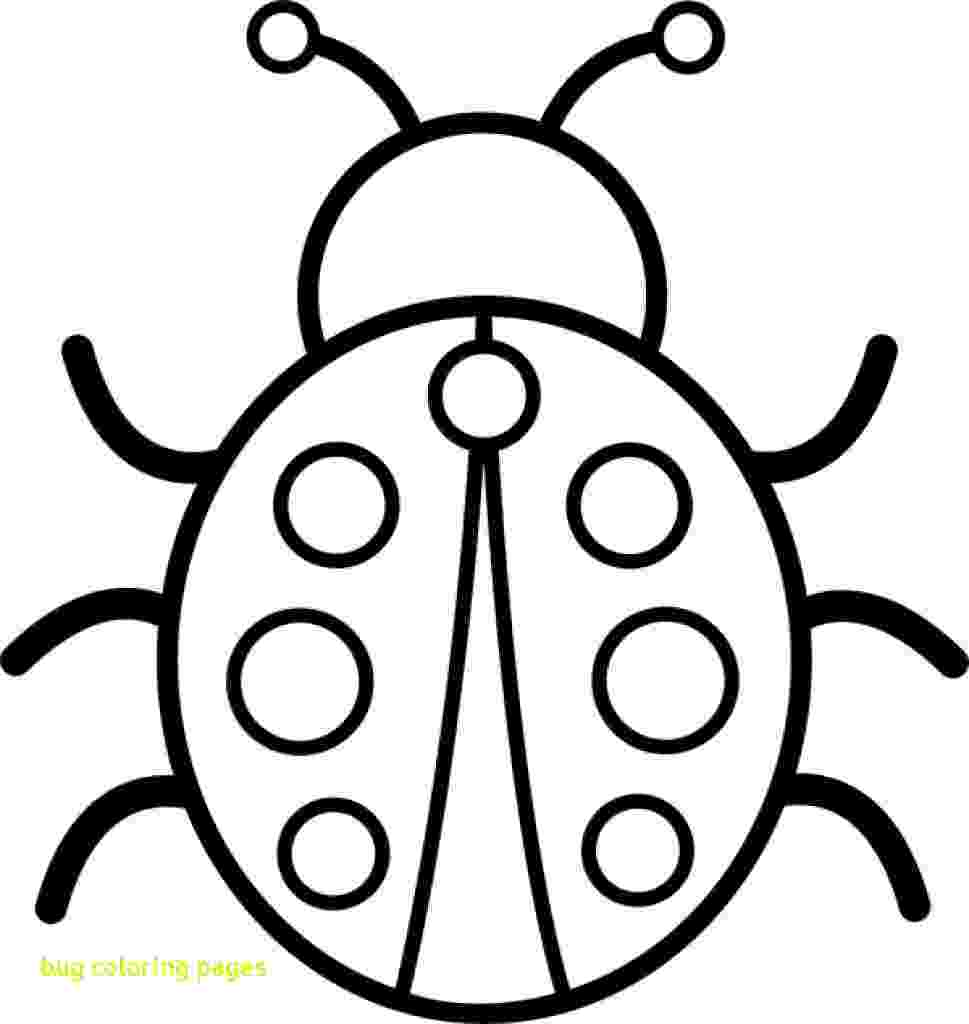 stink bug coloring page how to draw bed bugs stink bug coloring page radiokotha stink page bug coloring