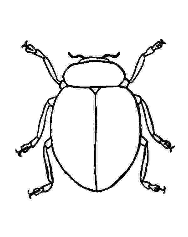 stink bug coloring page lady bug smell bad coloring page color luna stink coloring page bug