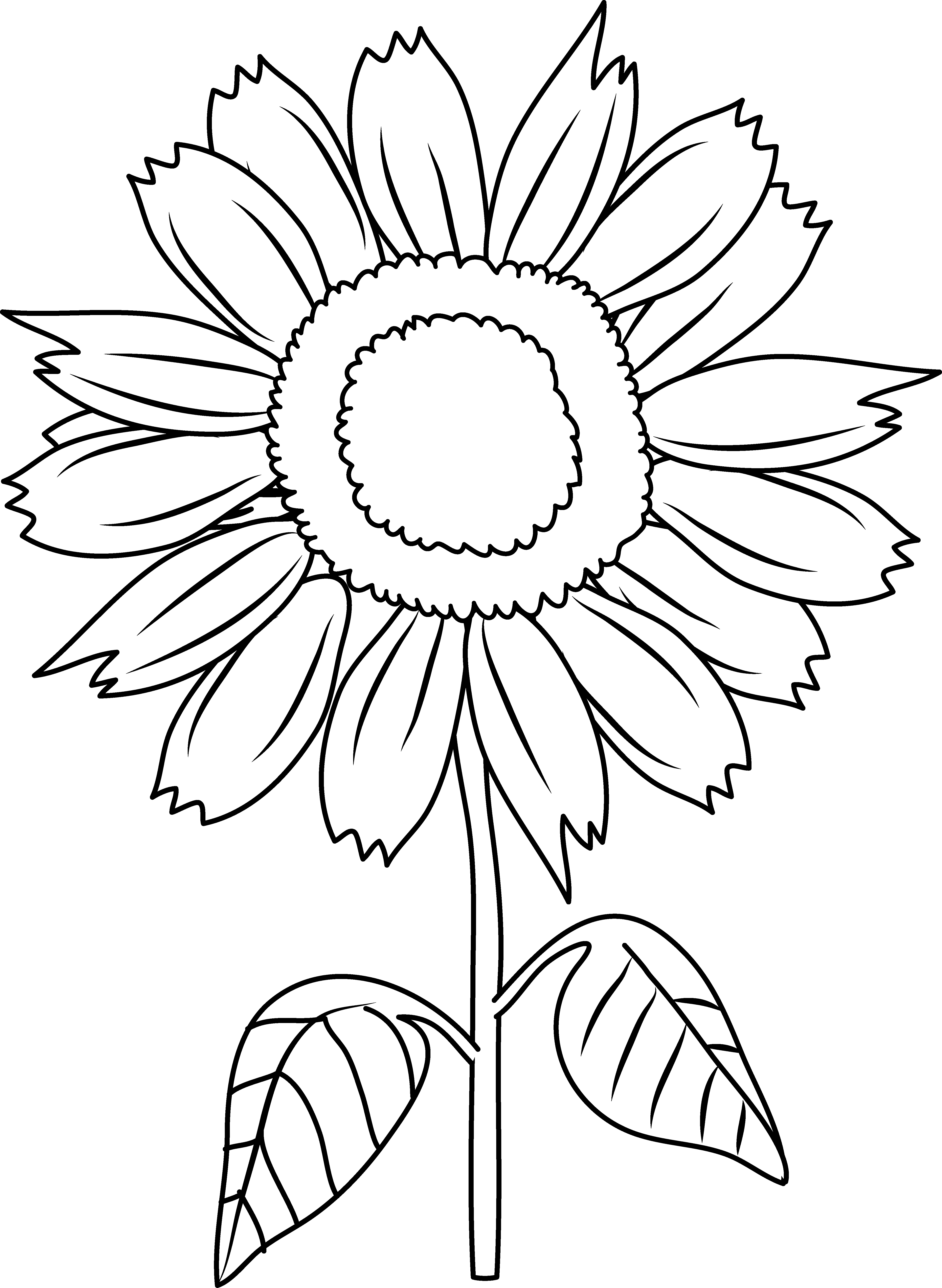 sunflower color sheet 15 beautiful sunflower coloring pages for your little girl sunflower color sheet
