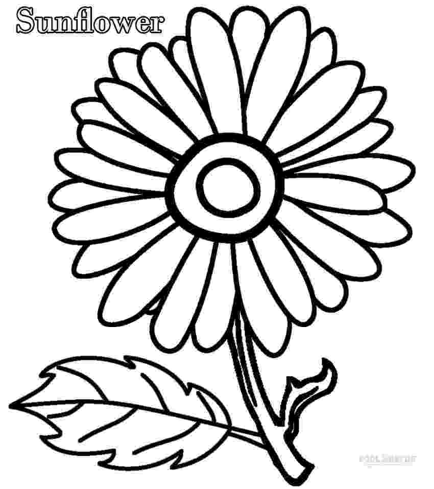 sunflower color sheet free printable sunflower coloring pages for kids sheet sunflower color