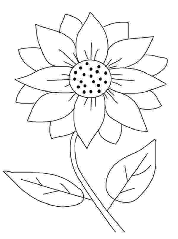 sunflower color sheet sunflower coloring pages to download and print for free sheet color sunflower