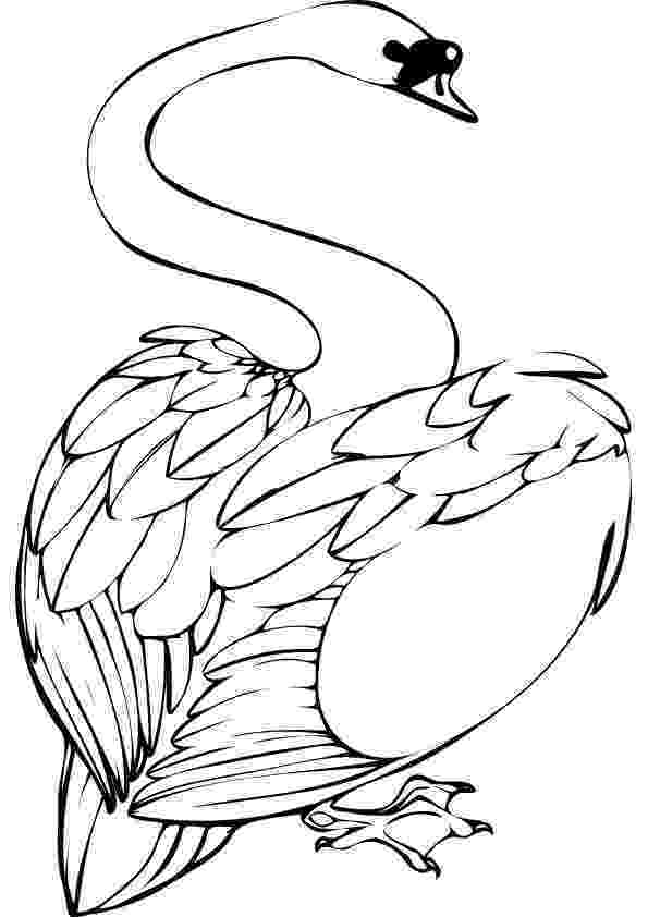 swan coloring free swan coloring pages swan coloring 1 1