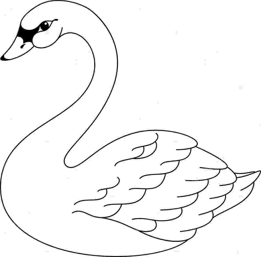 swan coloring free swan coloring pages swan coloring 1 2