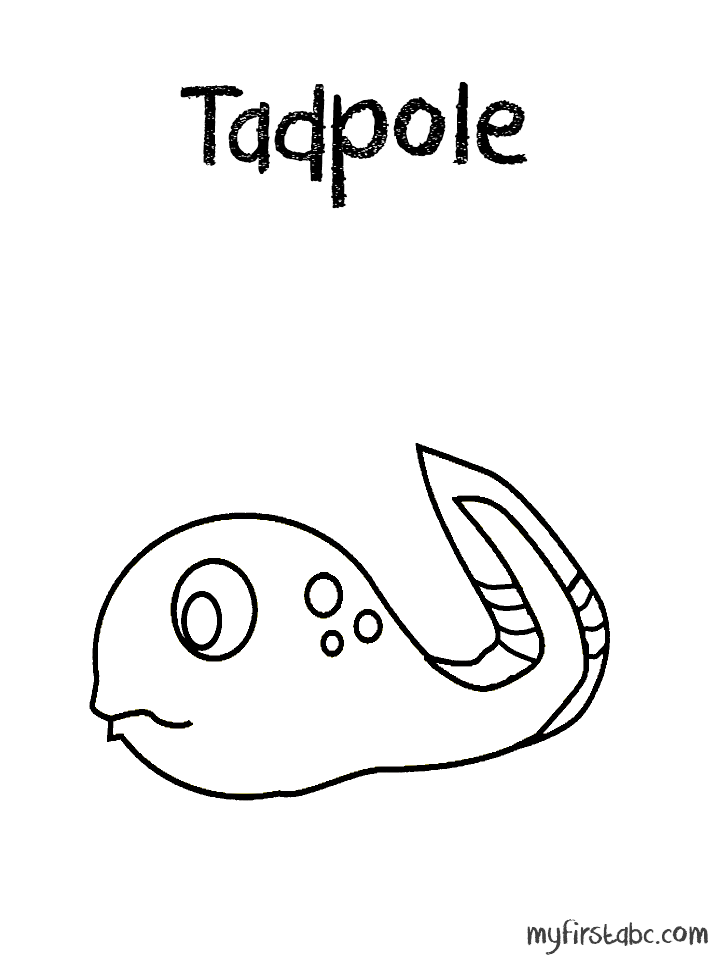 tadpole coloring page frogs coloring pages free coloring pages tadpole page coloring