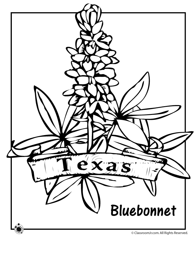 texas coloring book texas state flower coloring page flower coloring pages coloring book texas
