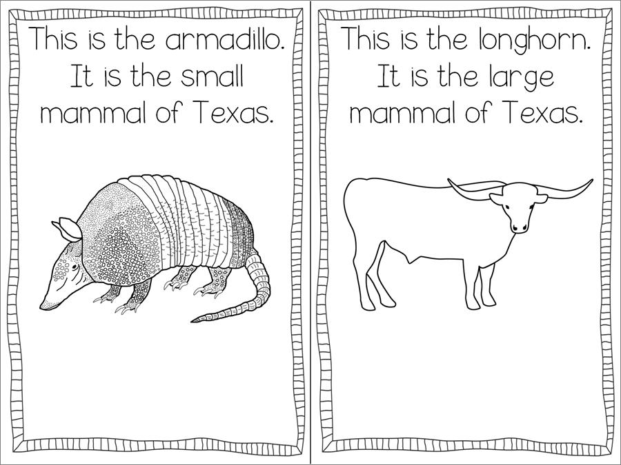 texas symbols printables texas symbols freebie teaching with haley o39connor printables texas symbols