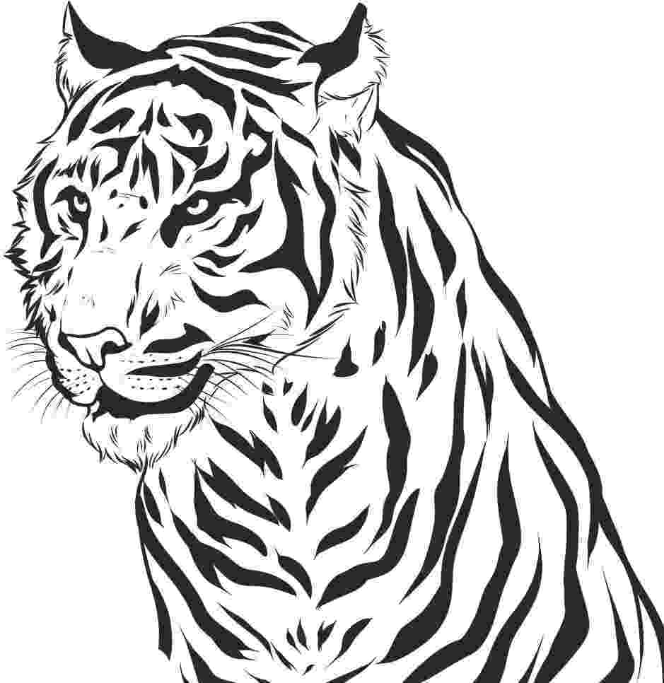 tiger color free printable animal tiger coloring pages tiger color
