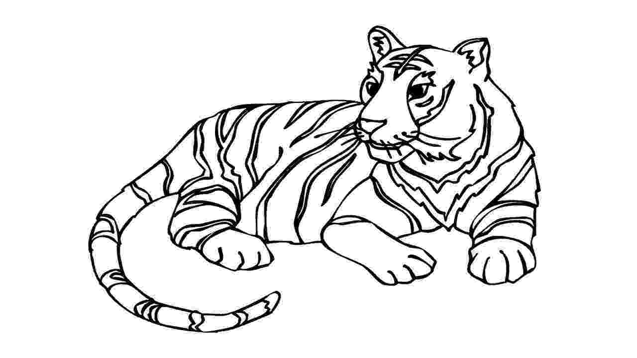 tiger color tiger print drawing at getdrawingscom free for personal color tiger