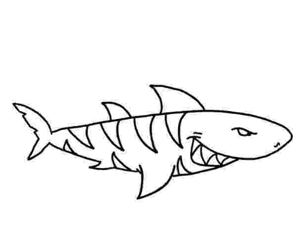 tiger shark coloring page tiger shark great barrier coloring page free shark shark tiger page coloring