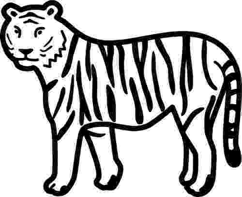 tiger without stripes coloring page coloring stripes tiger page without coloring stripes tiger page without