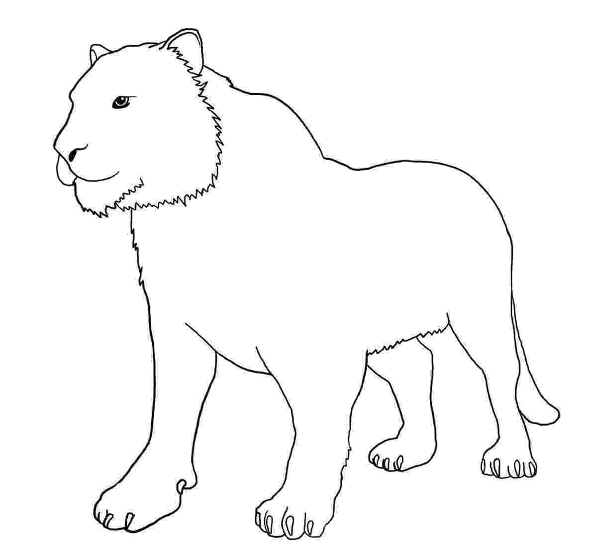 tiger without stripes coloring page tasmanian tiger wihtout stripes coloring page free stripes page tiger coloring without