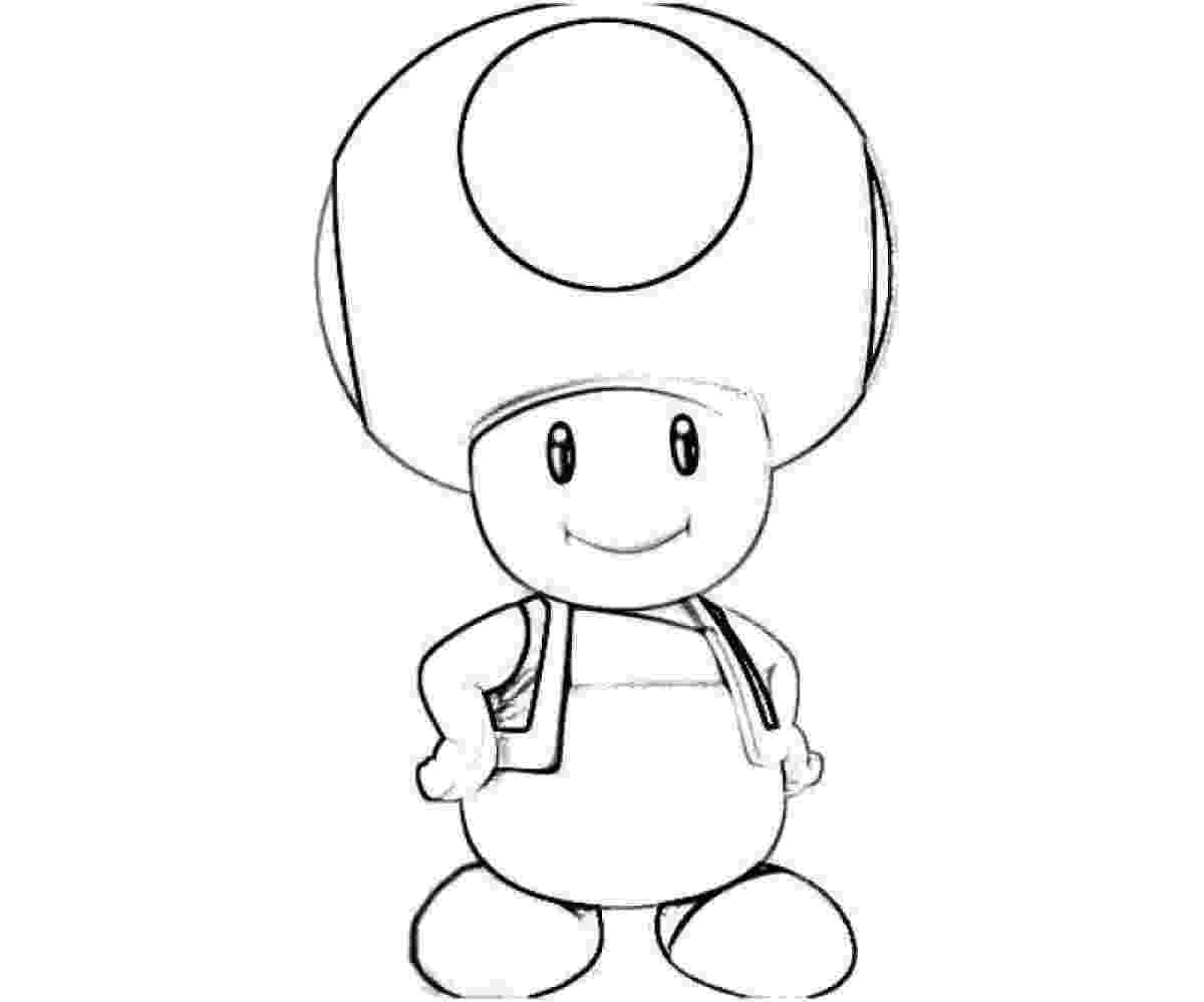 toad coloring pages american toad coloring page free printable coloring pages coloring pages toad