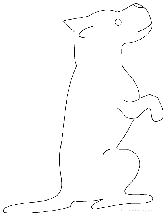 traceable dog pictures animal tracing pages by montessori mama in saigon tpt dog pictures traceable