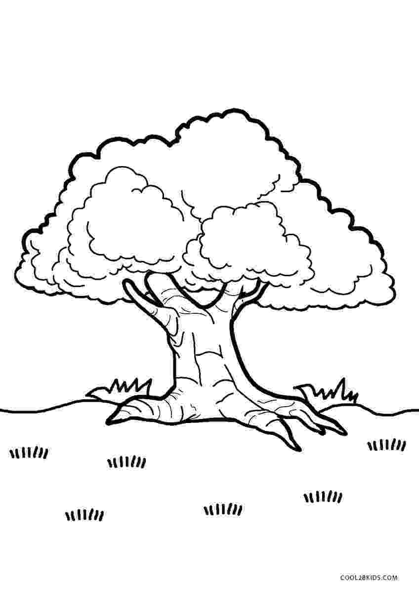 tree coloring pages free printable tree coloring pages for kids pages coloring tree