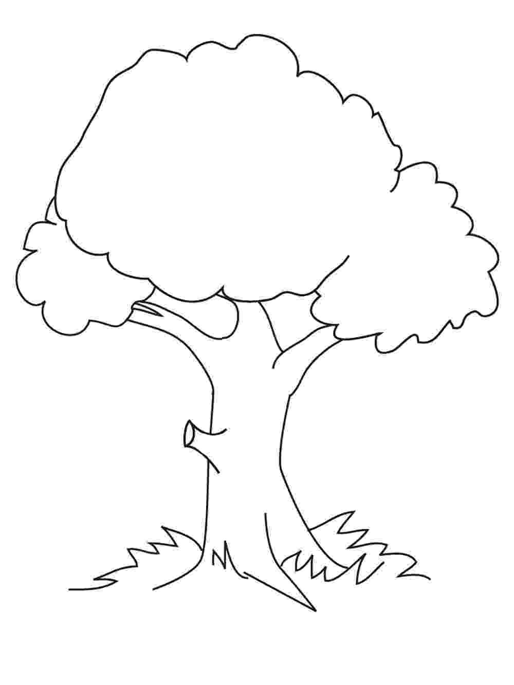 tree coloring pages free printable tree coloring pages for kids pages coloring tree 1 1