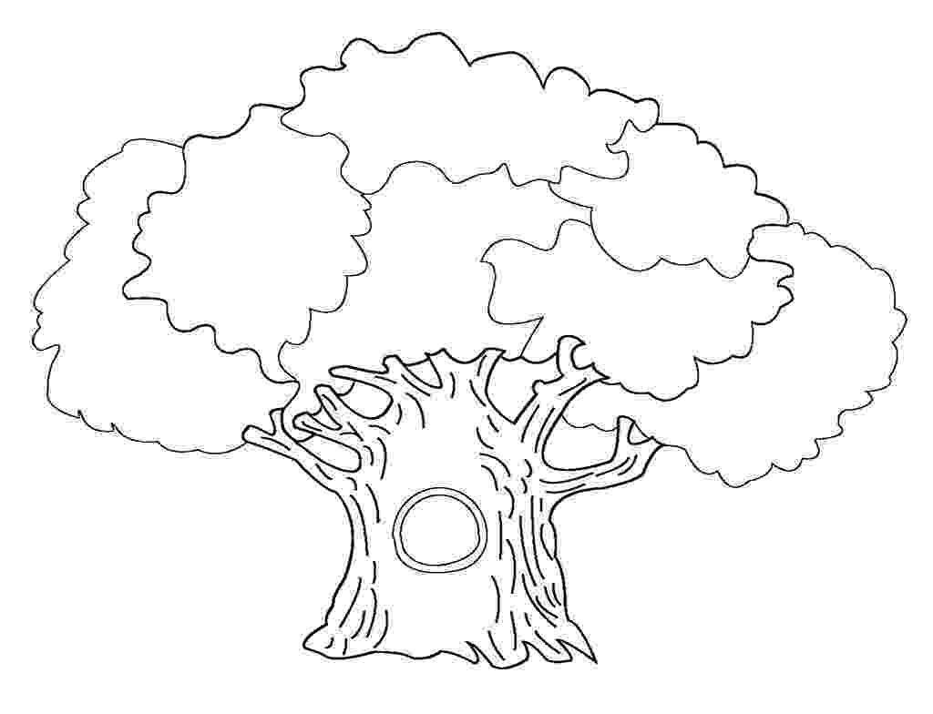 tree coloring pages free printable tree coloring pages for kids pages coloring tree 1 2
