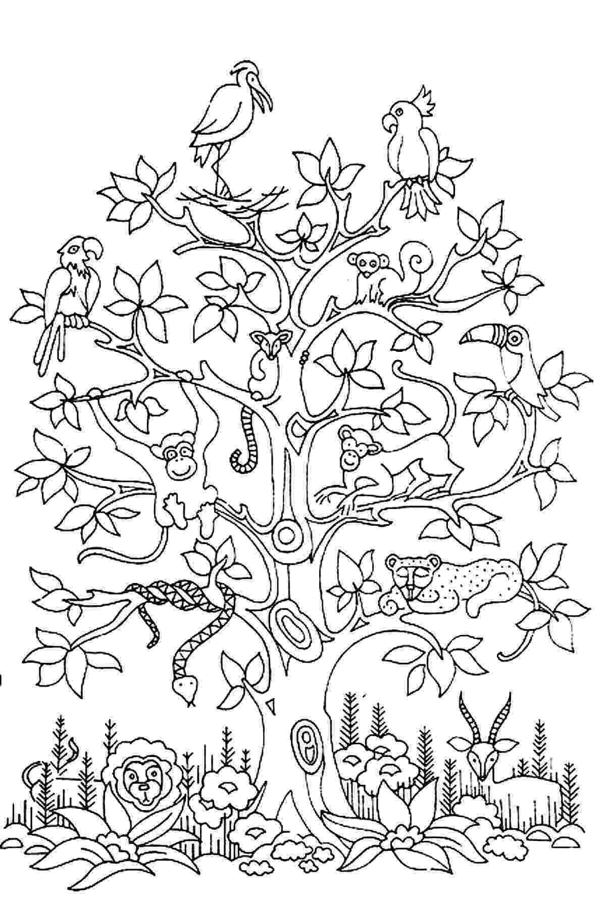 tree coloring pages tree coloring pages for adults coloring tree pages