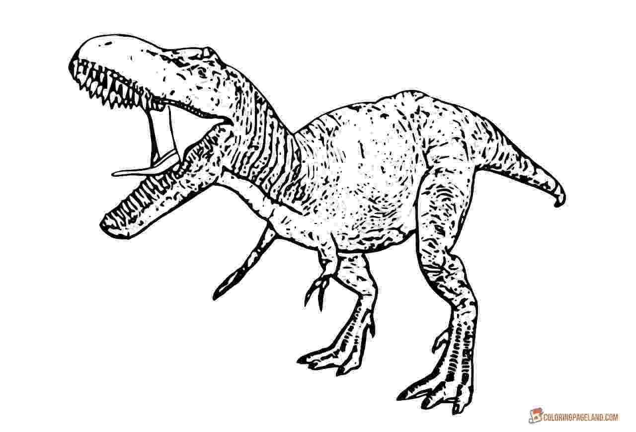 trex coloring pages ron schmidtling39s dinosaurs dinosaurs rock and roll coloring trex pages