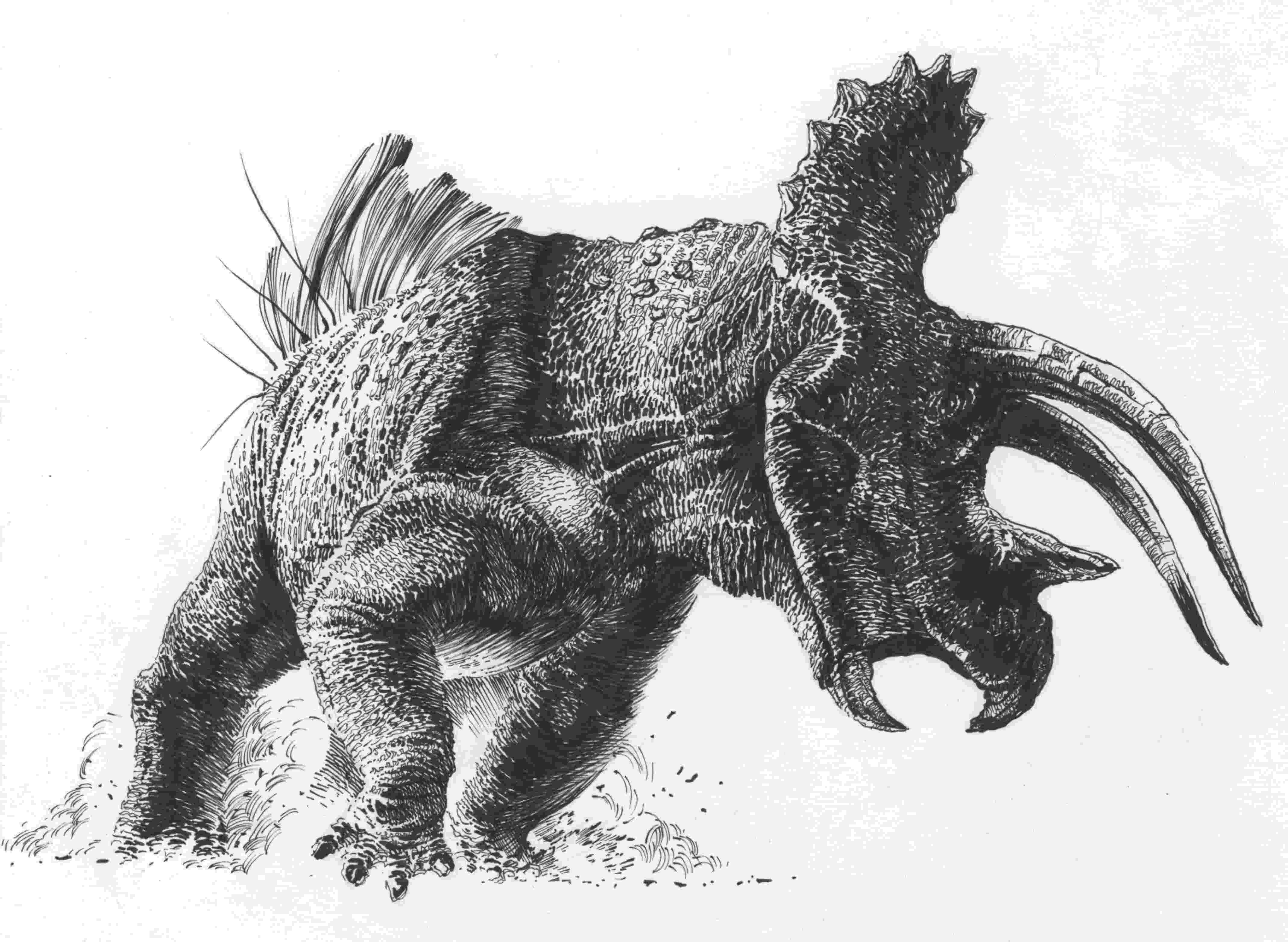 triceratops picture pin about dinosaur art on prehistoric in 2019 picture triceratops