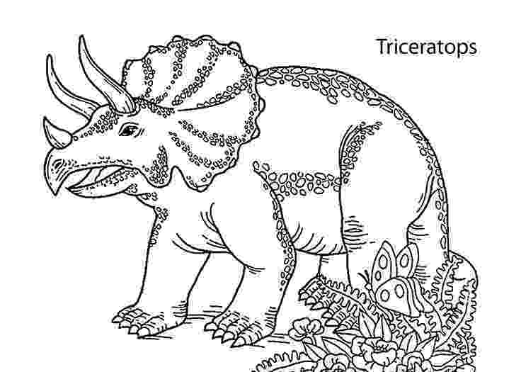 triceratops pictures to color 17 best images about coloring pages for kids on pinterest color to triceratops pictures