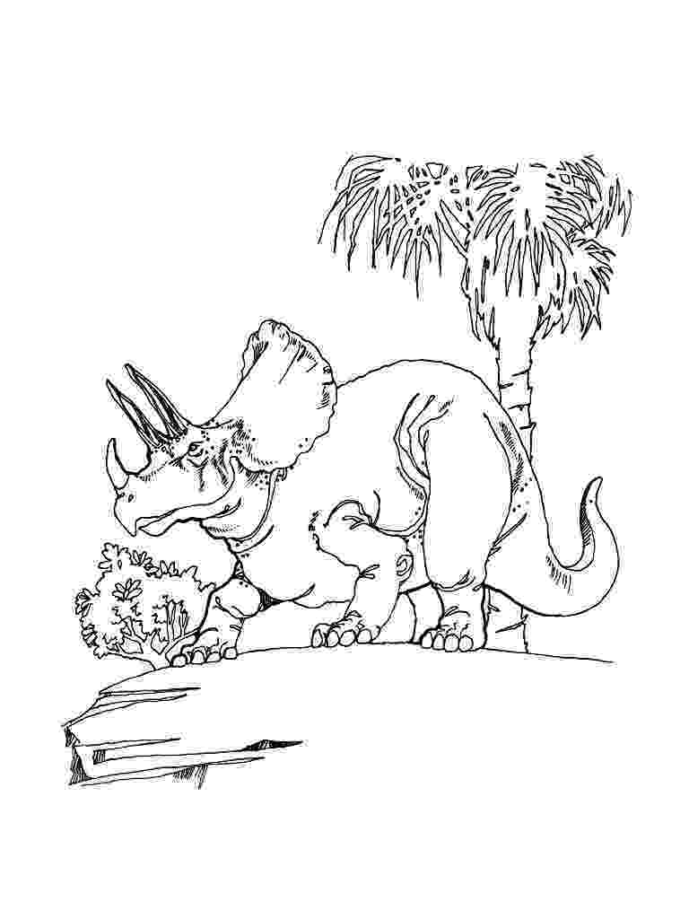 triceratops pictures to color free printable triceratops coloring pages for kids to triceratops color pictures