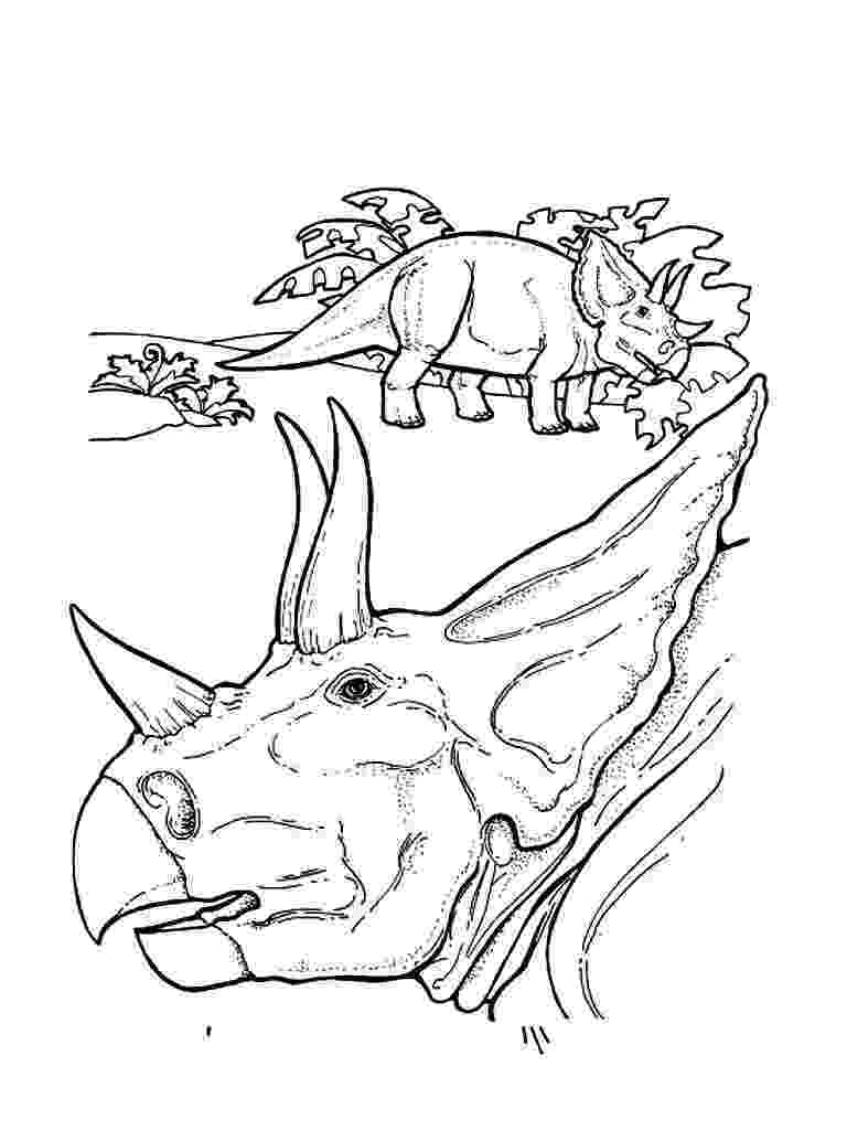 triceratops pictures to color free printable triceratops coloring pages for kids triceratops pictures color to