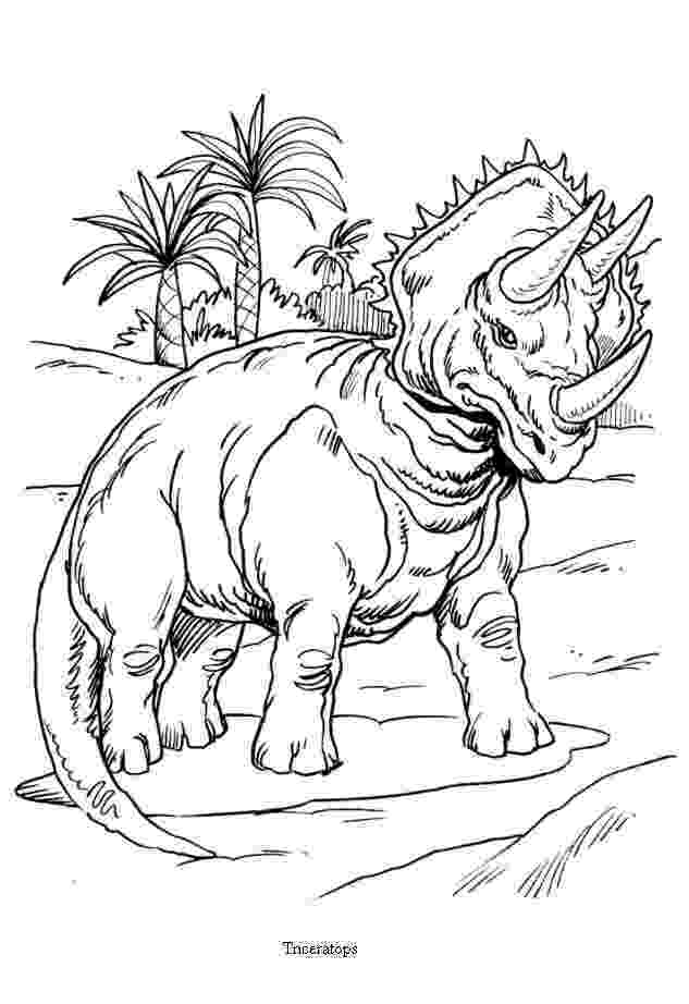 triceratops pictures to color triceratops and palm trees coloring pages hellokidscom to color pictures triceratops