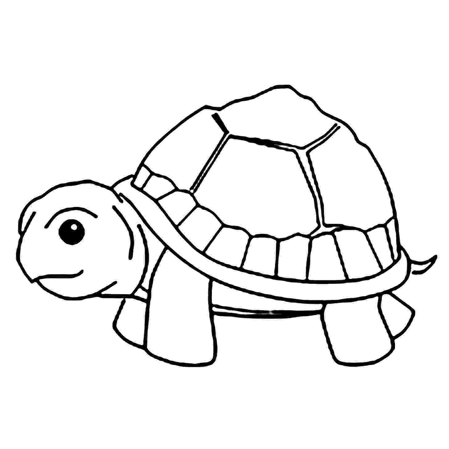 turtle pictures to color coloring pages turtles free printable coloring pages pictures color to turtle
