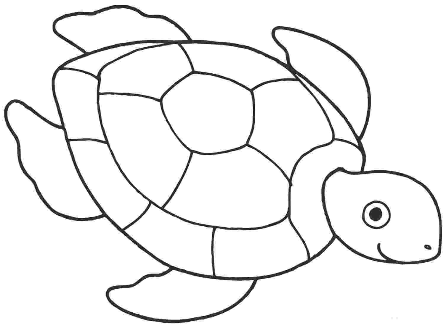 turtle pictures to color sea turtle coloring pages to download and print for free color pictures to turtle