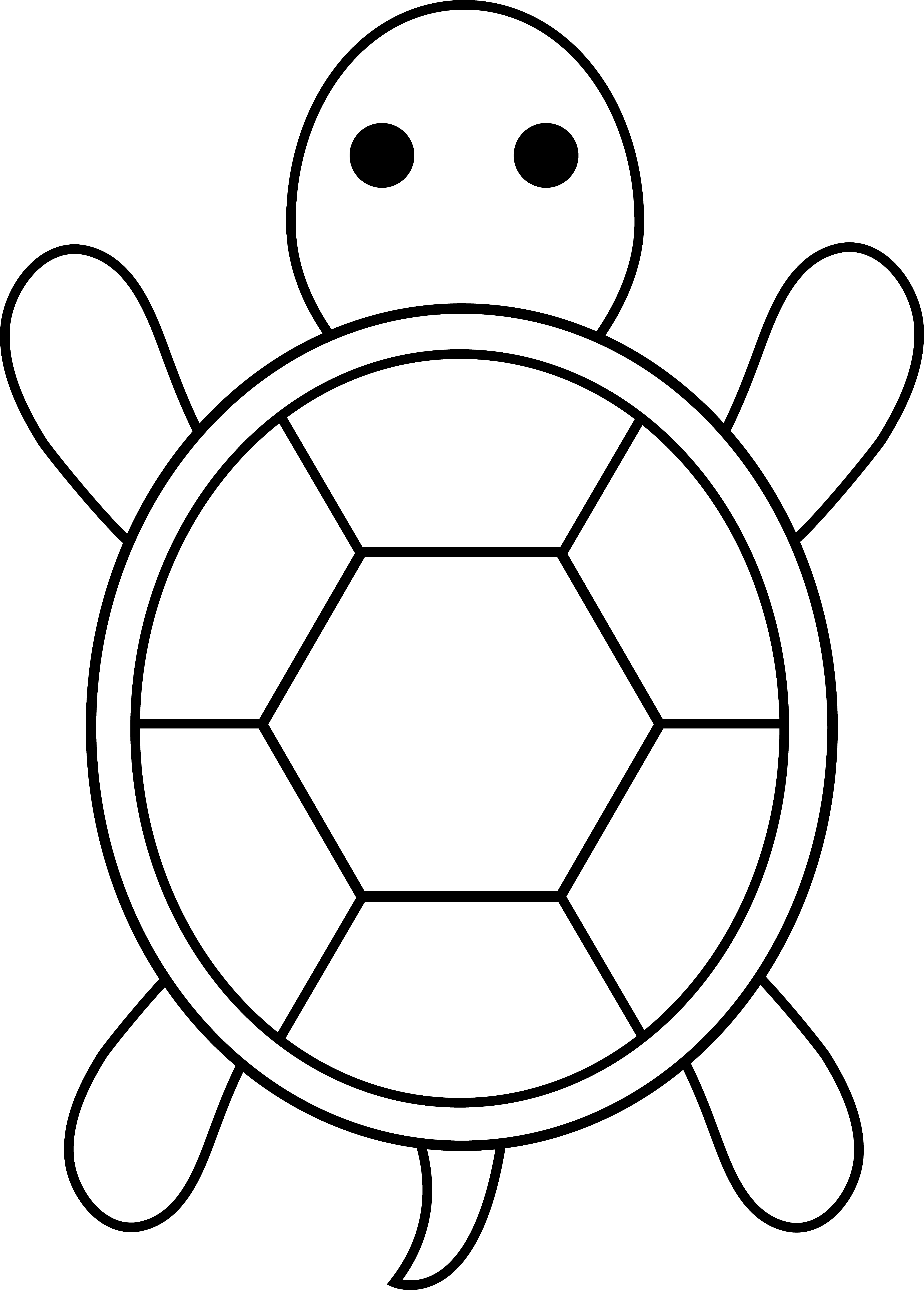 turtle pictures to color turtles to color for kids turtles kids coloring pages to color turtle pictures