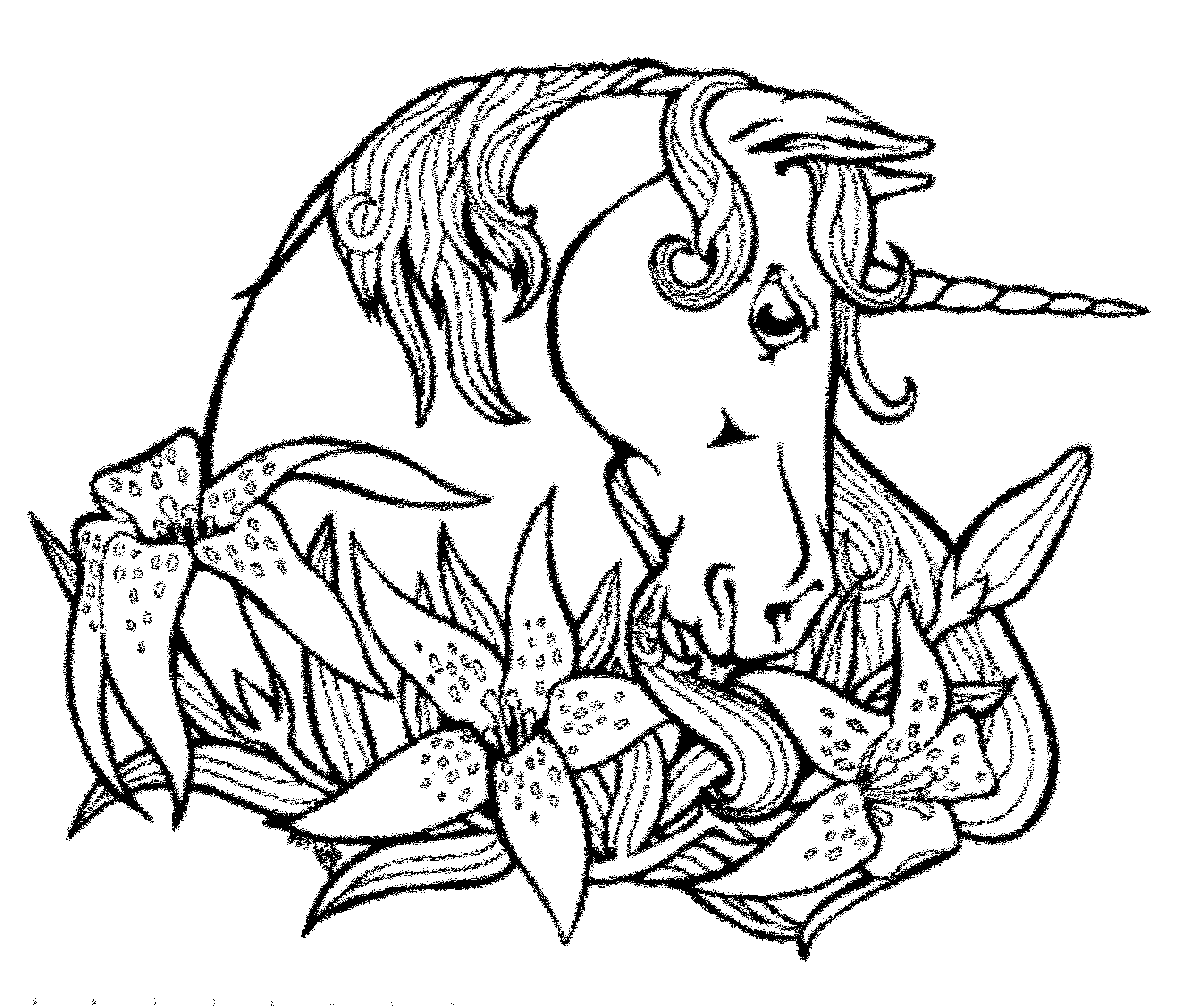 unicorn coloring pictures free printable unicorn coloring pages for kids cool2bkids unicorn pictures coloring