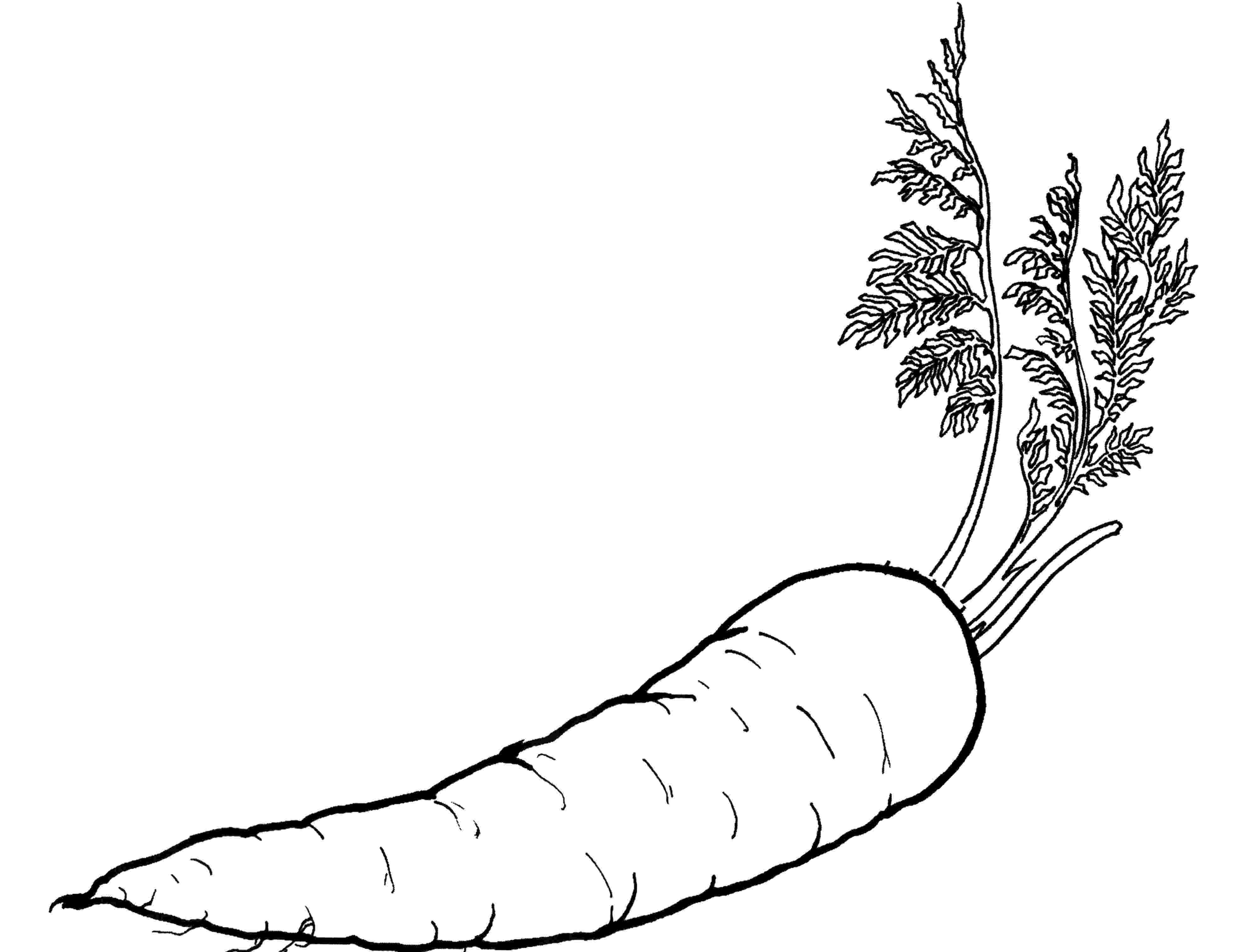 vegetables for colouring vegetables picture to print and color fruit coloring colouring for vegetables