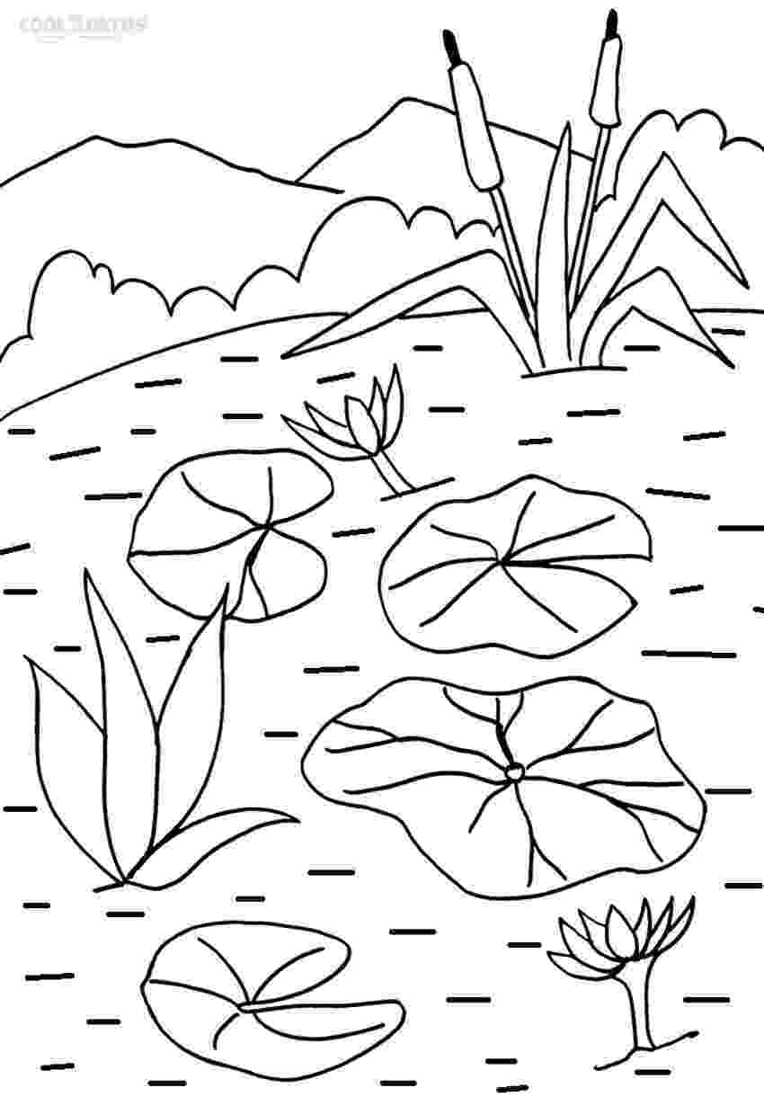 water lily coloring page water lily by kawarazaki shodo coloring page free page lily water coloring