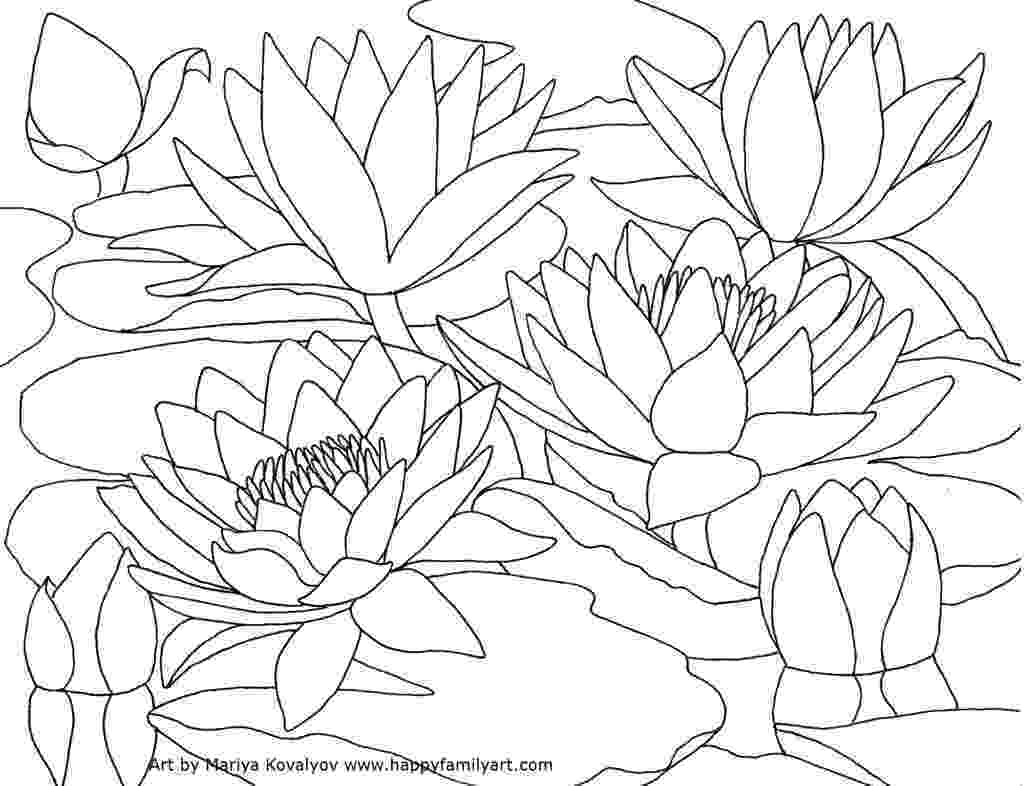 water lily coloring page water lily by ohara koson coloring page free printable water lily coloring page