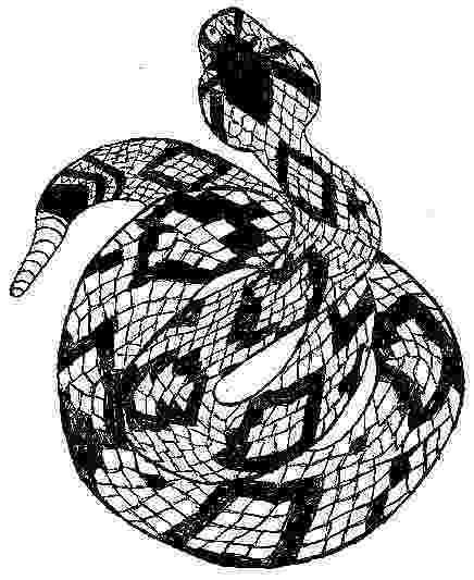 western diamondback rattlesnake coloring pages mojave desert coloring pages diamondback rattlesnake pages western coloring
