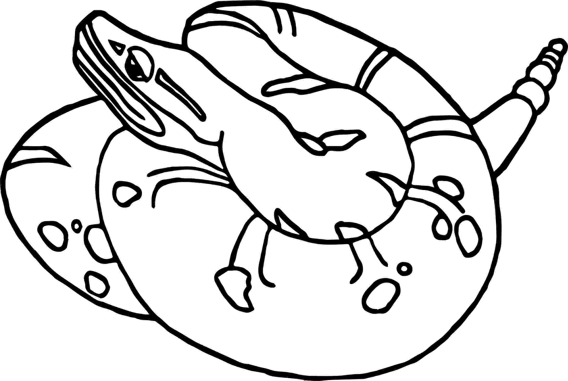 western diamondback rattlesnake coloring pages rattle snake drawing at getdrawingscom free for diamondback rattlesnake pages western coloring