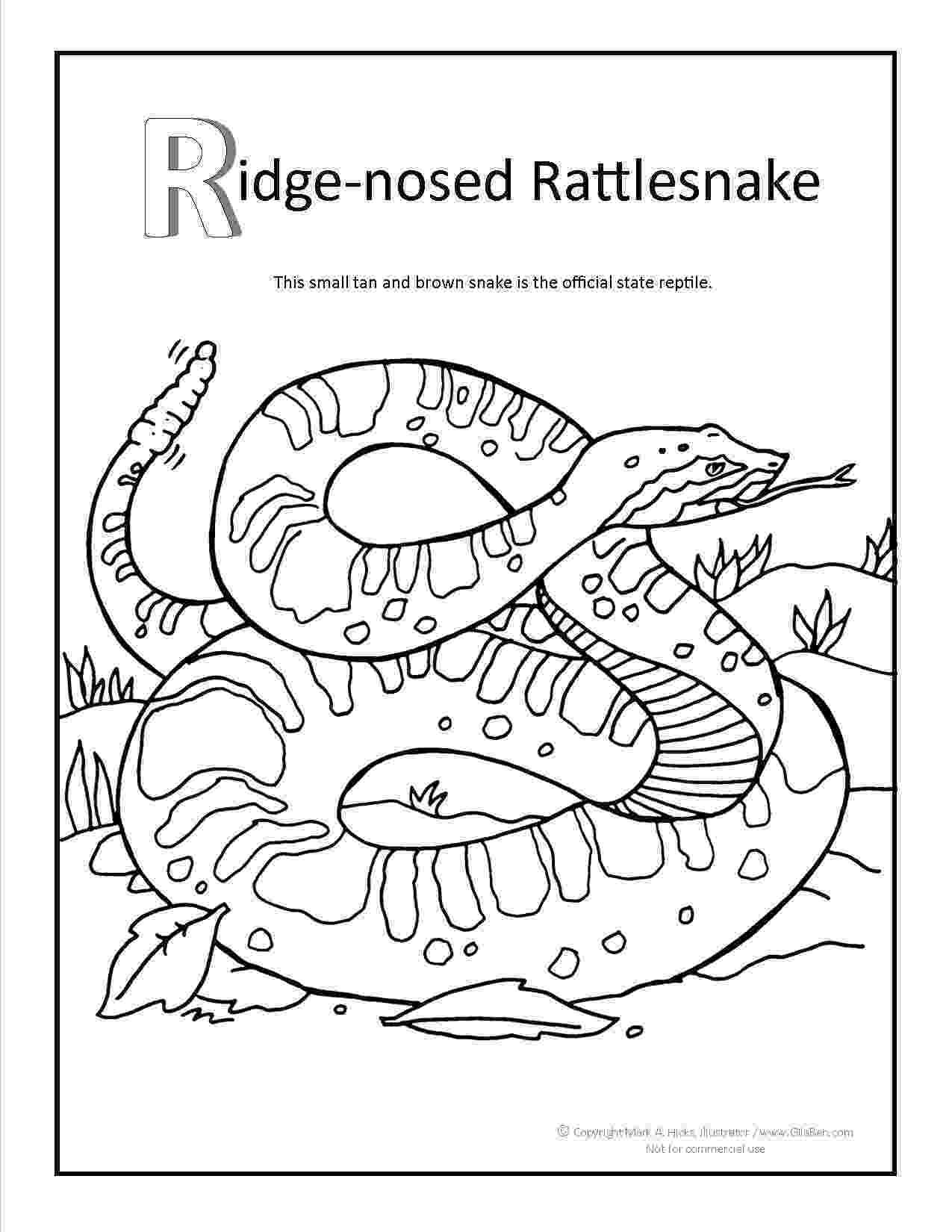 western diamondback rattlesnake coloring pages western diamondback rattlesnake coloring page coloring pages diamondback coloring pages western rattlesnake